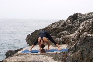 yoga asana  tittibhasana le guide complet  yoga with leslie
